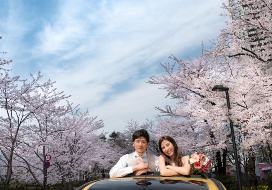 東京ミッドタウン 桜フォトウェディング